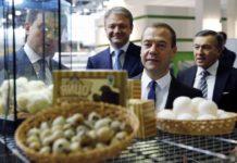 Пошли ли санкции на пользу сельскому хозяйству?