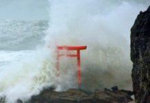 """Тайфун """"Хагибис"""" - видео"""